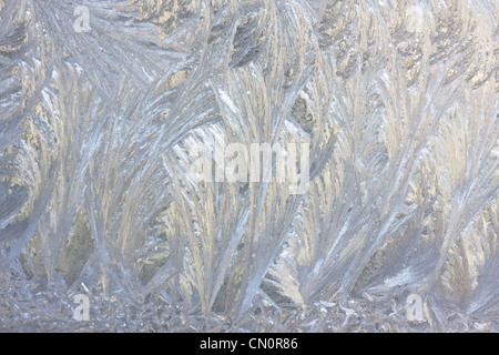 Fern-like structures in frostwork on a window - Stock Photo