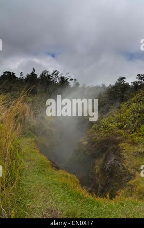 steam vents, Volcano National Park, Big Island, Hawaii - Stock Photo