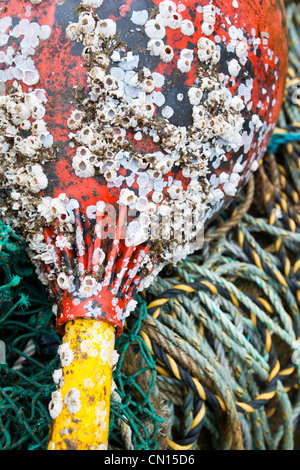 Fishing gear on the harbour at Portnalong, Isle of skye, Scotland, UK.
