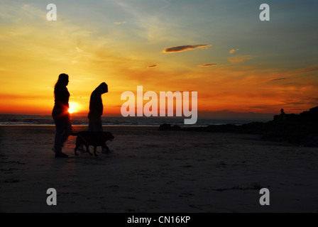 Glorious sunset on a welsh beach with a silhouetted  couple (man and woman) walking their dog as the sun sets behind - Stock Photo