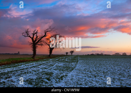 Country Lane Southrepps in snow Norfolk Winter - Stock Photo