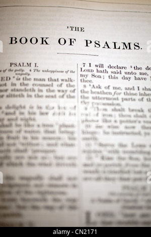 The Book of Psalms Bible Heading - Stock Photo