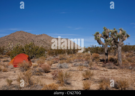 Tent in Joshua Tree national park, California, USA - Stock Photo