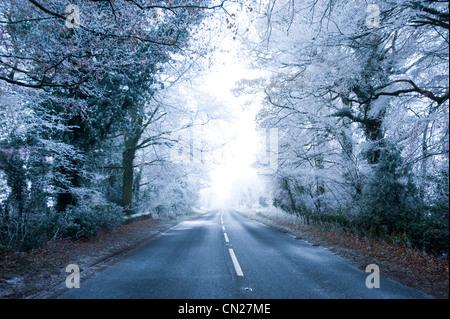 Rural road in winter - Stock Photo