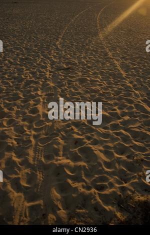 Tyre tracks on sandy beach - Stock Photo