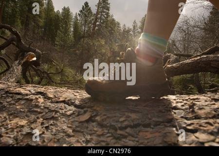 Woman hiking along tree trunk - Stock Photo