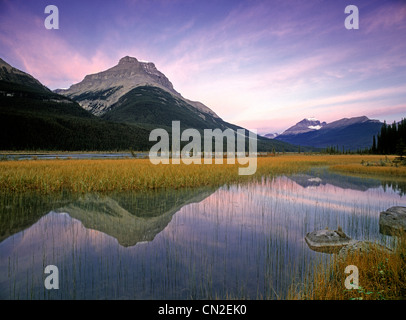 Mount Amery and Mount Athabasca at Rampart Ponds, Banff National Park, Alberta, Canada - Stock Photo