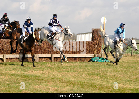 Point to Point, Horseheath, nr Haverhill - Stock Photo