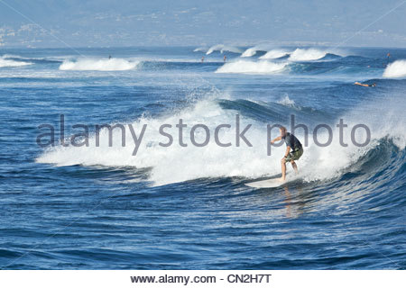 Surfers riding the waves at Ho'okipa Bay on the island of Maui in the State of Hawaii USA - Stock Photo