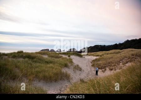 Businessman holding stepladder on beach Stock Photo