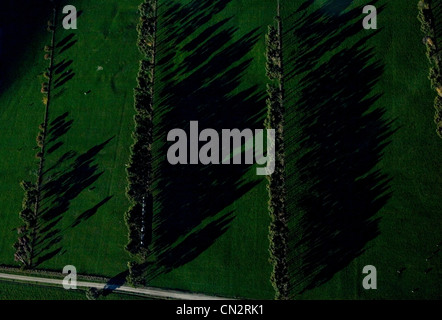 View from helicopter of fields in South Island, New Zealand - Stock Photo