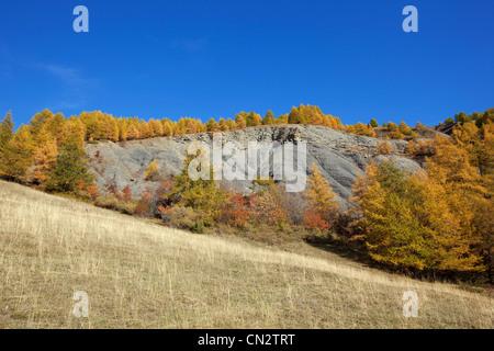 France, Alpes de Haute Provence, Parc National du Mercantour (National Park of Mercantour), Val d'Allos, Mourtisses - Stock Photo