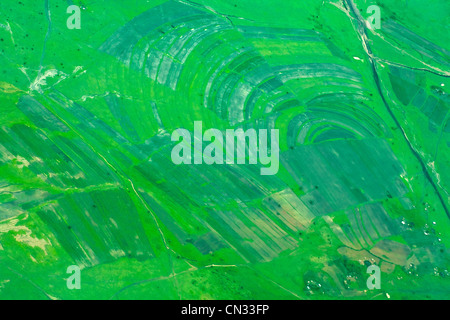 Aerial view of green fields, Tanzania, Africa - Stock Photo