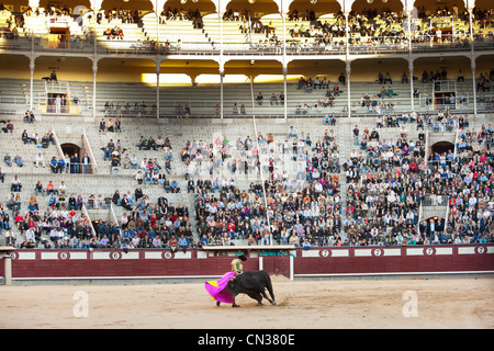 Bullfighter with bull in Las Ventas bullring with audience, Madrid - Stock Photo