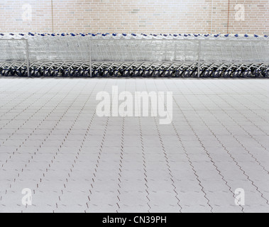 Line of grocery carts - Stock Photo