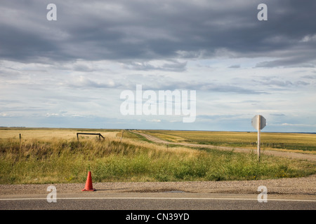 Traffic cone on rural road - Stock Photo