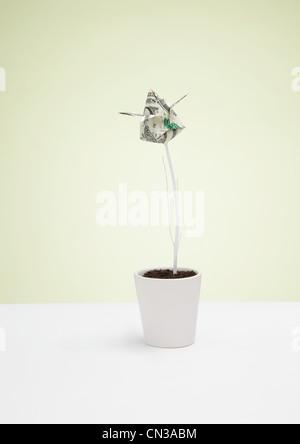 Origami us dollar banknote in plant pot - Stock Photo