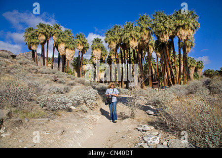 A hiker in Andreas Canyon, Indian Canyons, near Palm Springs, California - Stock Photo