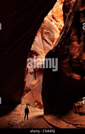 Hiker in the narrows of Buckskin Gulch, Paria Canyon - Vermilion Cliffs Wilderness, Utah. - Stock Photo