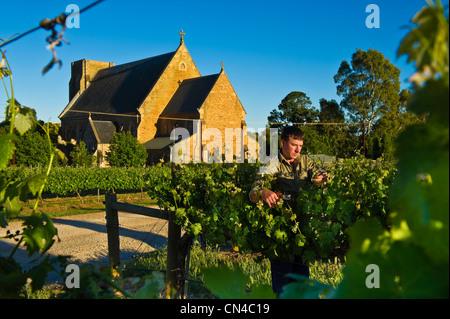 Australia, South Australia, La Clare valley, Seven hills cellar, the oldest cellar in the valley, Aloysius church - Stock Photo