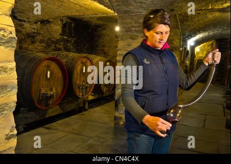 Australia, South Australia, La Clare Valley, Seven Hills Cellar, the cellar - Stock Photo