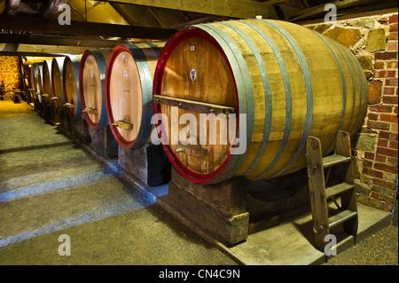 Australia, South Australia, Barossa Valley, Rockford winery, cellar - Stock Photo