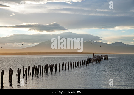 Chile, Patagonia, Magallanes and Antartica Chilean region, Ultima Esperanza province, Puerto Natales bay - Stock Photo