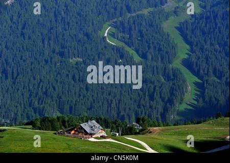 Italy, Trentino-Alto Adige, autonomous province of Bolzano, Dolomites, near the Passo Pordoi - Stock Photo
