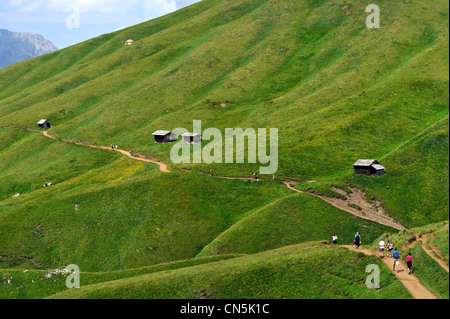 Italy, Trentino-Alto Adige, autonomous province of Bolzano, Dolomites, near Passo Sella, hikking around the Gruppo - Stock Photo