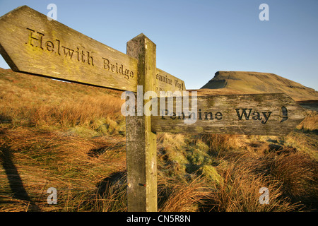 View from the Pennine Way towards the summit of Pen-y-Ghent, Yorkshire Dales, England. - Stock Photo