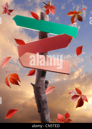 Falling autumn leaves and a wood sign for type - Stock Photo