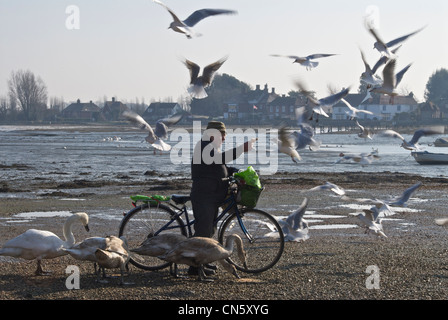 Birdman of Bosham - Stock Photo