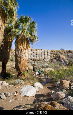 A hiker in Murry Canyon, Indian Canyons, near Palm Springs, California - Stock Photo