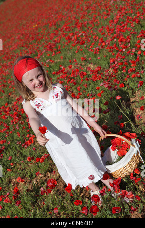 summer child picking flowers in meadow of poppies - Stock Photo