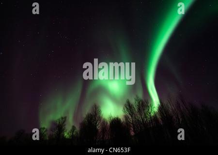 Aurora borealis or northern lights moving across night sky within the Arctic Circle Tromso Troms Kvaløya region - Stock Photo