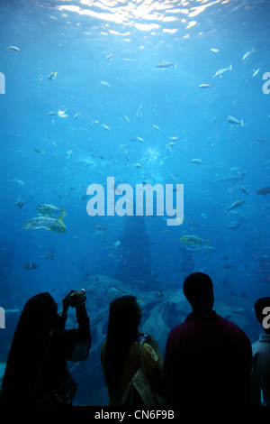 People watching the massive aquarium at the Atlantis (the Palm) hotel in Dubai with tons of marine life - Stock Photo