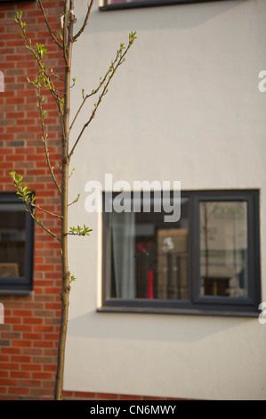 New build social housing - Stock Photo