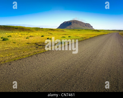 Long dirty road in country green desert - Stock Photo