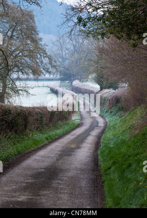 Country lane on a frosty morning in Shropshire England - Stock Photo