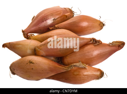 shallots isolated on a white background. - Stock Photo