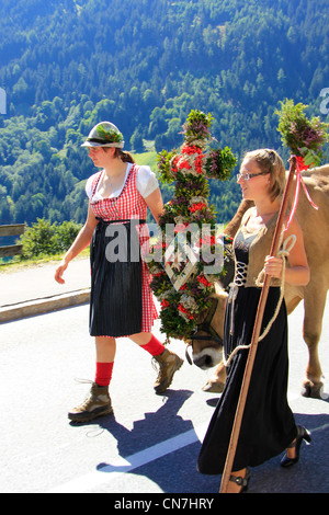Ceremonial driving down of cattle from the mountain pastures, returning of the cattle to their respective owners - Stock Photo