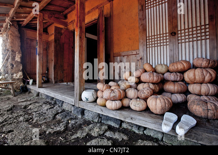 South Korea, Jeju Province, Seongeup, pumpkins stored in the porch of a traditional house (Hanok) of Seongeup village - Stock Photo
