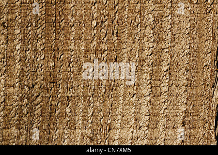 close up of a wooden fence panel showing texture - Stock Photo
