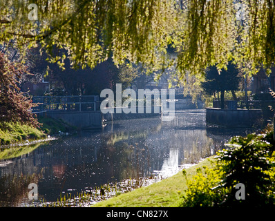 Park in Chelmsford town center showing river chelmer - Stock Photo
