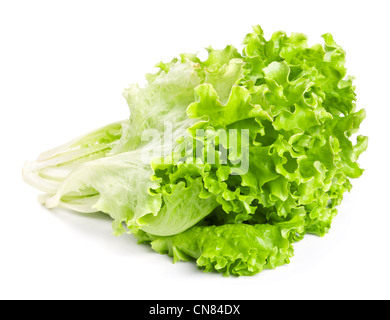 Fresh green lettuce leaves isolated on white background - Stock Photo