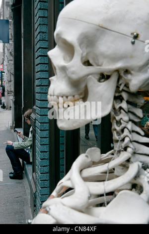 United States, New York City, Manhattan, Soho, skeleton in front of the Evolution store, 120 Spring Street - Stock Photo