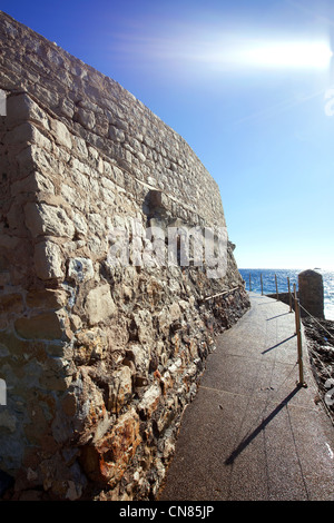 France, Alpes Maritimes, Cap d'Ail, the coastal trail between Cap Mala and Cap Rognoso - Stock Photo