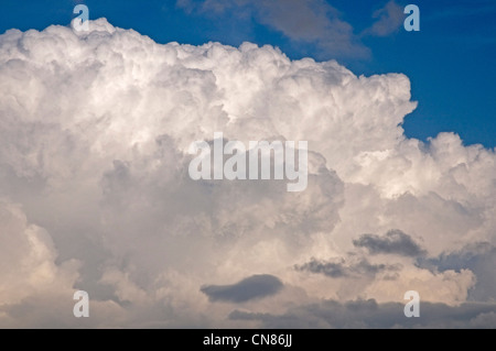 Developing cumulonimbus clouds near  Bradninch, Devon - Stock Photo