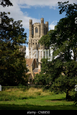 View of Ely Cathedral's West Tower  from the Deans Meadow - Stock Photo