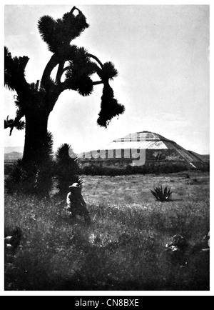 First published 1914 Pyramid of the sun San Juan Teotihuacan Mexico Aztec - Stock Photo